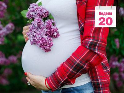 20 неделя беременности