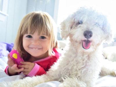 Домашние питомцы для детей